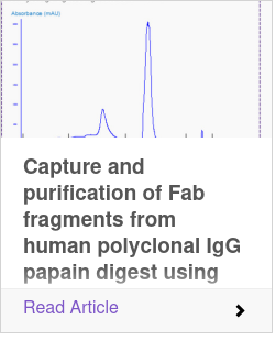 Capture and purification of Fab fragments from human polyclonal IgG papain digest using Fabsorbent™ F1P HF