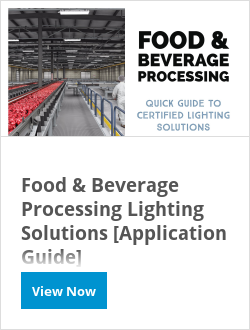 Food & Beverage Processing Lighting Solutions [Application Guide]