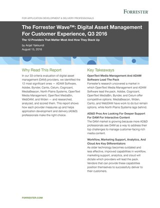 The Forrester Wave™: Digital Asset Management For Customer Experience, Q3 2016