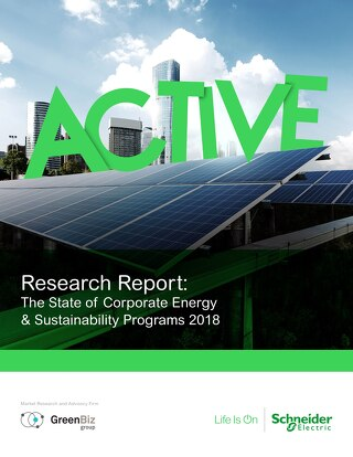GreenBiz Research Findings