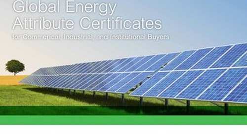 Ebook - The Definitive Guide to Energy Attribute Certificates (EACs)