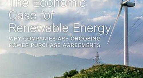 The Economic Case for Renewable Energy