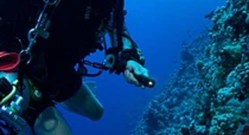 Gas Sensing Solutions' CO2 sensor increases diver safety