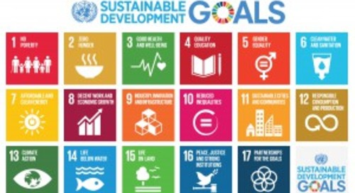 Is There a Business Case for SDGs?