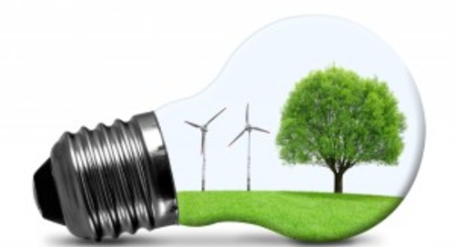 Renewable Choices: International Markets