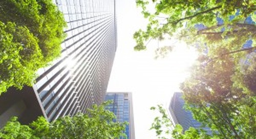 The Returns of Renewable Energy Investment