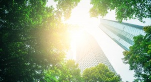 From Commitment to Action: How Cities Can Lead with 100% Renewable Energy
