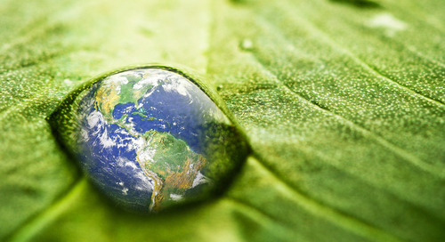 5 Ways Schneider Electric Celebrates Earth Day, Every Day