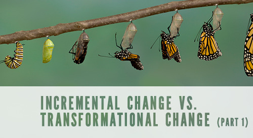 Incremental Change vs. Transformational Change (Part 1)