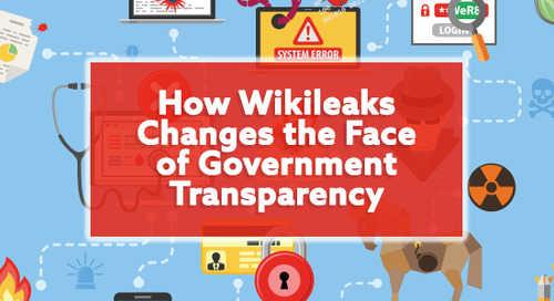 How WikiLeaks Changes the Face of Government Transparency