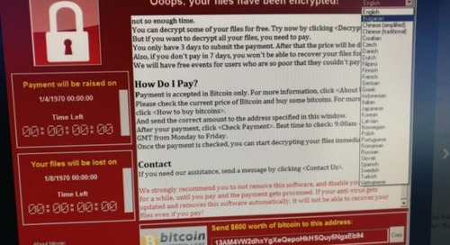 Inside the thriving ransomware market