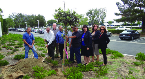 YKK North & Central America Group plant trees in honor of World Environment Day