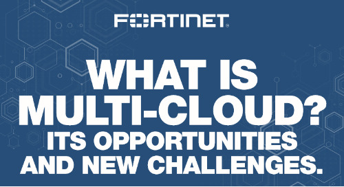 Infographic: Multi-Cloud and Security