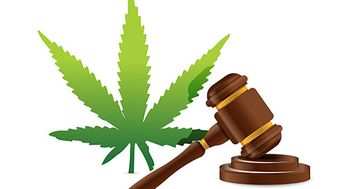 Why Marijuana Assets May Not Be Administered in Bankruptcy
