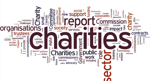 Stronger Charities for a Stronger Society