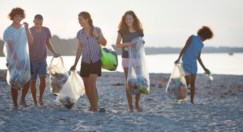 Operation oceans: The clean-up begins