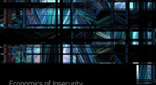 Economics of Insecurity