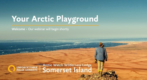 Arctic Watch Wilderness Lodge | Unforgettable Polar Moments