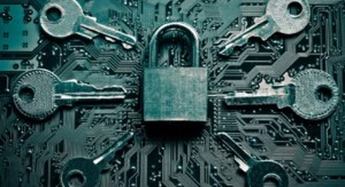 4 Ways Your Non-Profit Can Stay On Top Of Data Security