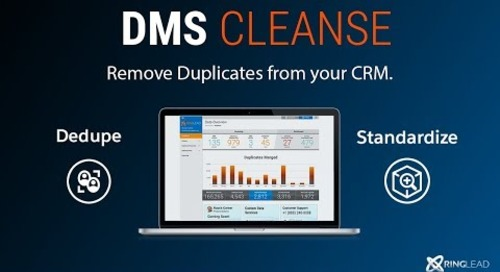 DMS Cleanse  - Lead to Lead Deduplication