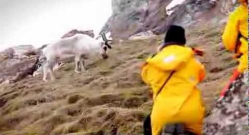 Spitsbergen Explorer: 30 second commercial