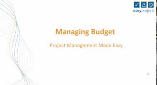Easy Projects Tutorial - Managing Budget