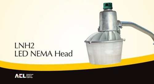 LNH2 NEMA Head Security Luminaire