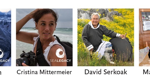 SeaLegacy Photographers Paul Nicklen & Cristina Mittermeier Prepare for the North Pole Summit 2017