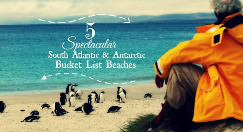 5 Spectacular Antarctic Bucket List Beaches