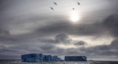 An adventurous spirit in Antarctica