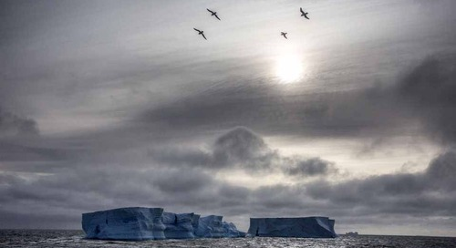 An adventurous spirit in Antarctica