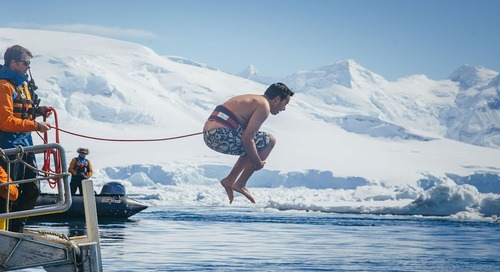 Taking the Polar Plunge: Our Aquatic Antarctic Adventure