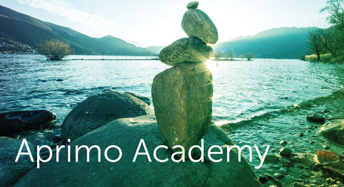 Coming Soon: The Aprimo Academy Portal