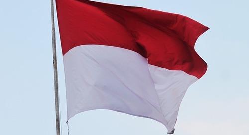 Indonesian Language Translation eBook