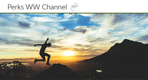 Channel Incentives: Marketplace Best Practices