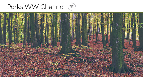 Channel Incentives and Channel Loyalty, an Ever Changing Ecosystem