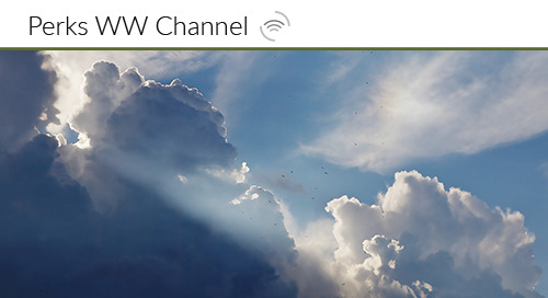 Is Channel Loyalty Possible in the Cloud?