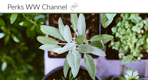 Start Fresh with your Channel Partners: 3 Tips for Sustaining Partner Loyalty