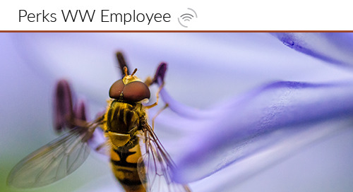 How Educating your Worker Bees Will Extend their Professional Life