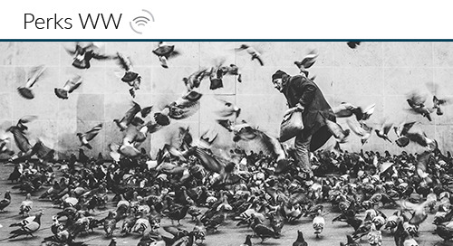 How Pigeons Shaped the Modern Office