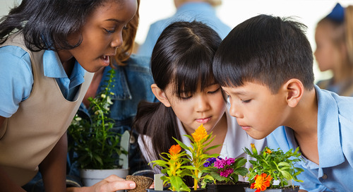 5 lessons for greening a school with STEM-based curriculum