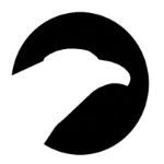 Profile Photo of The Falcon Group