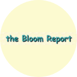 Thumbnail image of the Bloom Report