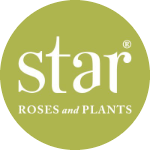 Profile Photo of Star® Roses and Plants
