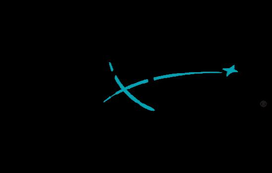 VariQuest  logo