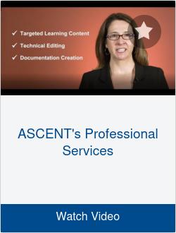 ASCENT's Professional Services