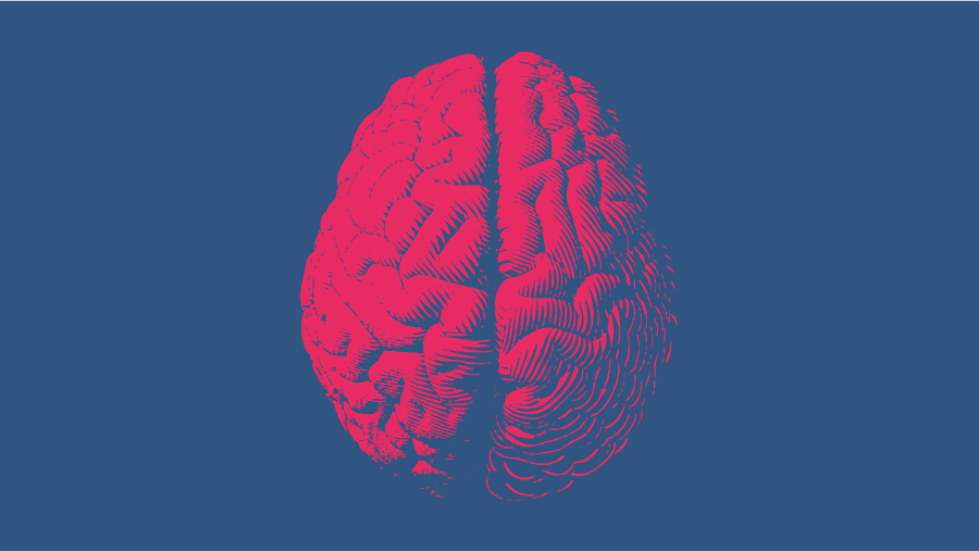 no-code and the brain