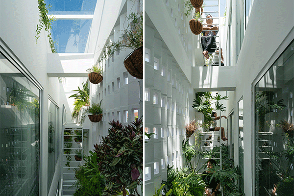 The indoor garden at the back of the house offers top lighting to bring natural light and promote air ventilation in the house.