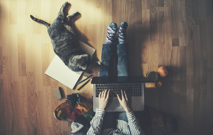 Employee working from home with laptop and cat by their feet