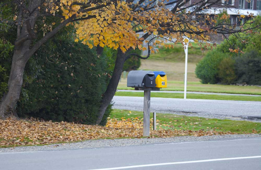 A mailbox in New Zealand during fall.